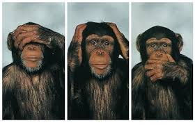 listening-selective-talking-monkeys-can-show-us